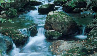 Astueriens Geologie, Flora und Fauna