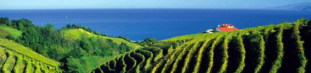 Bus-Rundreise Weingebiete Baskenland